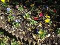 Flower bed, Memorial Park, 2017 Törökbálint.jpg