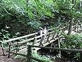 Footbridge crossing the Grinds Brook - geograph.org.uk - 949777.jpg