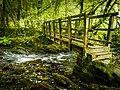 Footbridge on the Corpse Way, Dartmoor. (43275869645).jpg