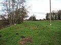 Footpath along the Lark - geograph.org.uk - 1639141.jpg
