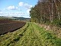 Footpath alongside Seller's Plantation in the Howardian Hills AONB - geograph.org.uk - 1031755.jpg