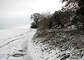 Footprints in the snow - geograph.org.uk - 1623956.jpg