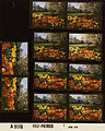 Ford A9151 NLGRF photo contact sheet (1976-04-07)(Gerald Ford Library).jpg