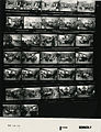 Ford B1088 NLGRF photo contact sheet (1976-08-16)(Gerald Ford Library).jpg