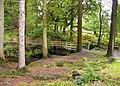 Forest Garden - Coed y Brenin - geograph.org.uk - 1290148.jpg