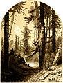 Forest Hymn pg 25.jpg