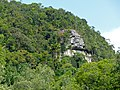 Forest on the cliffs (15572771809).jpg