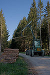 Forestry Forwarder Ösa 250.jpg