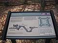 Fort Mill Ridge Civil War Trenches Romney WV 2008 10 30 13.JPG