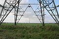Four legged giant - geograph.org.uk - 257481.jpg