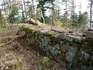 Château du Petit-Ringelstein - West wall; dry stone walling of the enceinte