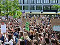 FridaysForFuture protest Berlin 31-05-2019 10.jpg