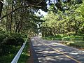 Fukuoka Prefectural Road No.542 near Shikanoshima Resort Hotel.jpg