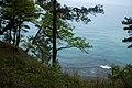 G. Gelendzhik, Krasnodarskiy kray, Russia - panoramio (247).jpg