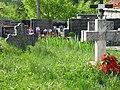 Gardun, Trilj, Hrvatska - stari i novi grobovi.jpg