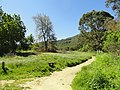 Garland Ranch Regional Park - Carmel Valley, CA - DSC06852.JPG