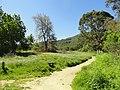 Garland Ranch Regional Park - Carmel Valley, CA - DSC06852.JPG