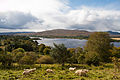 Gartan Lough 2012 09 19.jpg