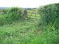 Gate, Acomb Fell - geograph.org.uk - 16046.jpg