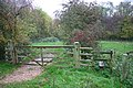 Gate and Stile on Public Footpath - geograph.org.uk - 279219.jpg