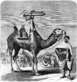 Gatling battery gun (camel) - Scientific American - 1872.png