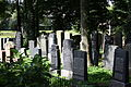 Gelnhausen Jüdischer Friedhof 30.JPG
