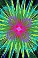 Geometrics - 7222294446.jpg