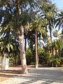 Giardini Winter 4.jpg