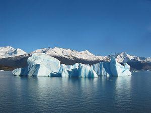 Iceberg floating in Lago Argentina broken off from the Perito Moreno Glacier