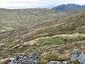 Gleann a' Mhill Bhig - geograph.org.uk - 431481.jpg