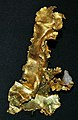 Gold from quartz-gold hydrothermal vein (Tuolumne County, California, USA) (16409775564).jpg
