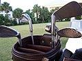 Golf clubs.jpg