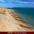 Golfo de santa clara.png