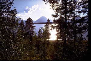 Grand Teton National Park and John D. Rockefeller, Jr. Memorial Parkway GRTE1774.jpg
