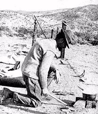 Joseph Grinnell - Grinnell in the Mojave Desert, 1914