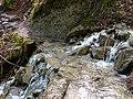 Gué @ Ruisseau @ Le Grand-Bornand (51199681496).jpg