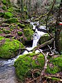 Guado sentiero cai prato 38 fosso delle Selve.jpg