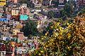 Guanajuato Mexico 8.jpg