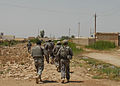 Guardsmen, Iraqi Army Soldiers on the hunt in Abu Ghraib DVIDS173741.jpg