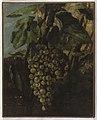 Gustave Courbet - Grappe de raisins - PPP574 - Musée des Beaux-Arts de la ville de Paris.jpg