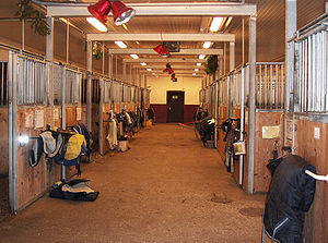 Stable - Horse stable interior.
