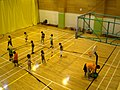 HK YMCA TST Club Basketball Court n Young Children Course a.jpg