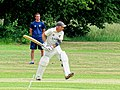 Hatfield Heath CC v. Takeley CC on Hatfield Heath village green, Essex, England 31.jpg