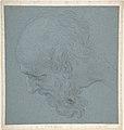Head of a Bearded Man Looking to Upper Left MET DP809488.jpg