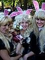 Hef and his bunnies (1794866441).jpg
