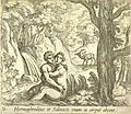 Hermaphroditus et Salmacis.jpg