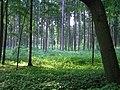 Herzogsrunde - panoramio (2).jpg