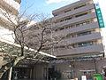 Higashiyamato Hospital.JPG