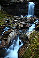 Hills-creek-autumn-waterfalls - West Virginia - ForestWander.jpg