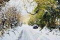Hilltop Lane, Chaldon, Surrey - geograph.org.uk - 1657426.jpg